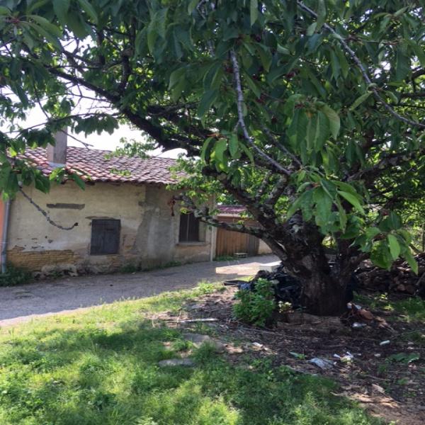 Offres de vente Maison Aucamville 82600